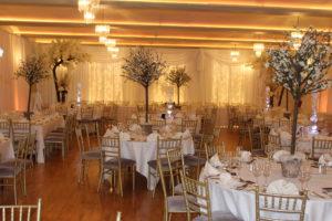 Wedding-Draping-Fernhill-House-Hotel-Cork-Weddings By Wow-Weddings